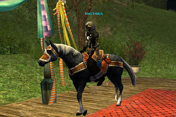 Bywater Steeplechase Horse Show - Naethril
